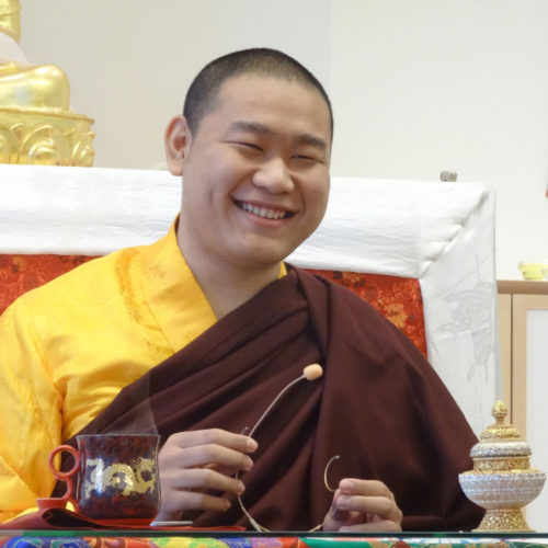 H.E. Jamgon Kongtrul Rinpoche in Möhra